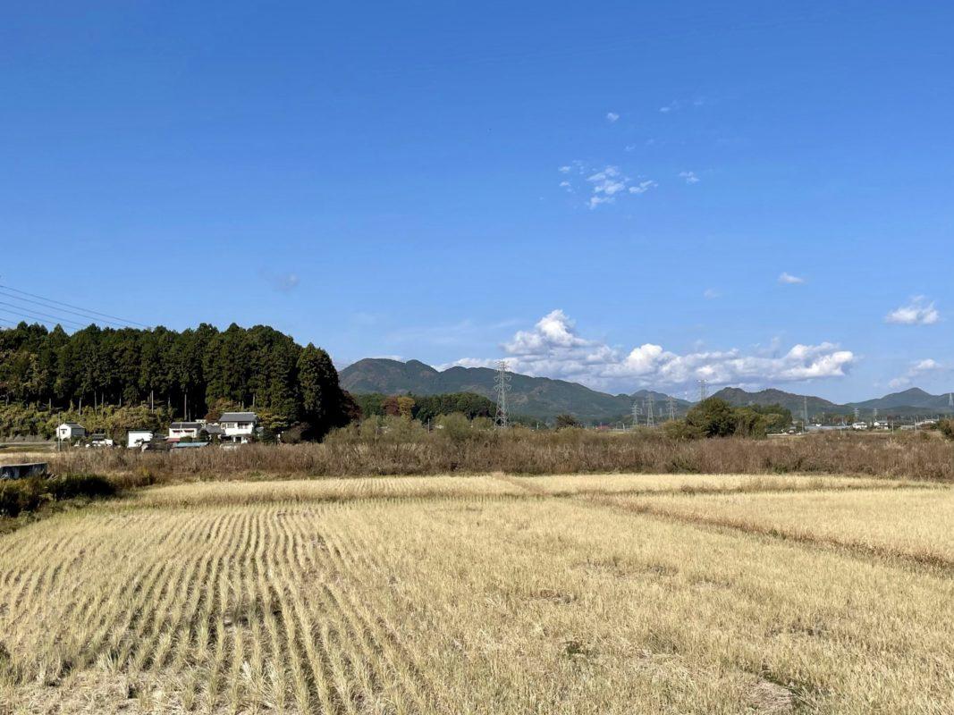 高橋餃子のある大谷