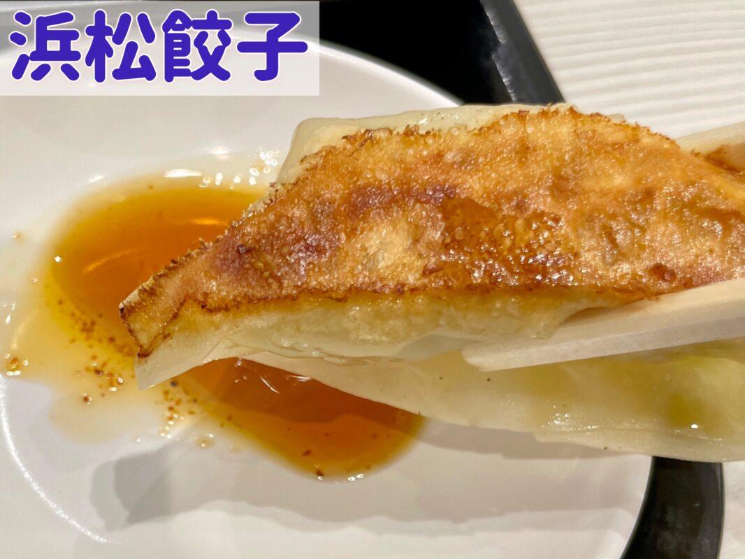 浜松餃子の皮と餡を宇都宮餃子と比べる
