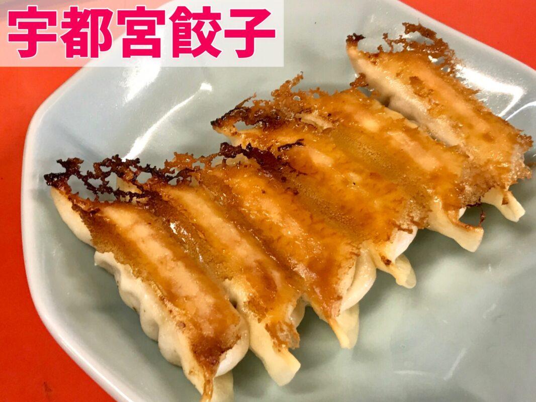 宇都宮の焼き餃子を浜松餃子と食べ比べる