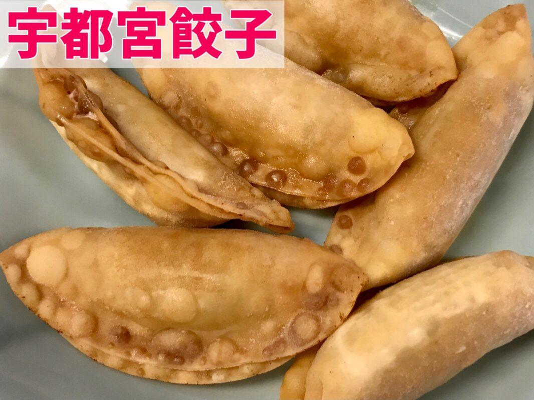 宇都宮餃子の揚げ餃子を浜松餃子と比べる