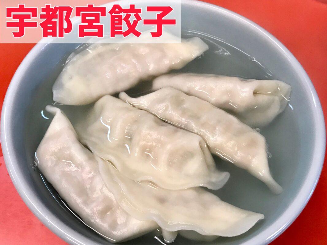 宇都宮餃子の水餃子を浜松餃子と比べる