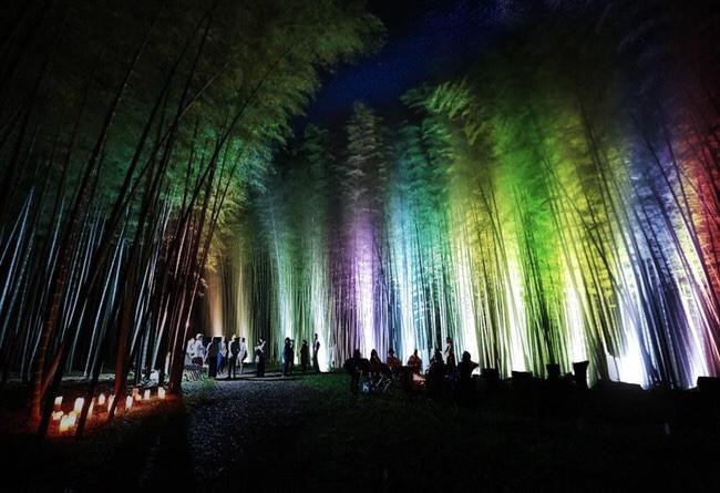 若竹の杜 若山農場でイルミネーション