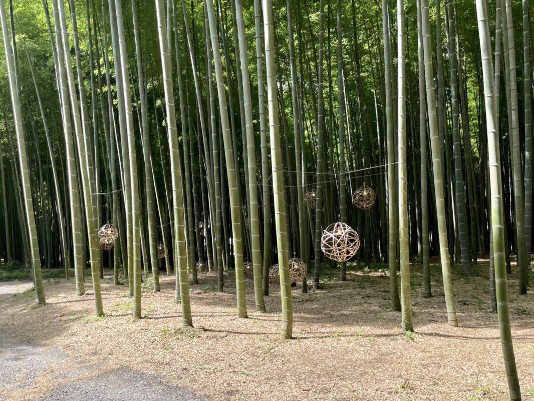 若竹の杜 若山農場の竹細工
