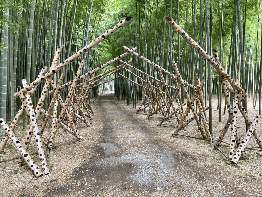 若竹の杜 若山農場の竹のゲート