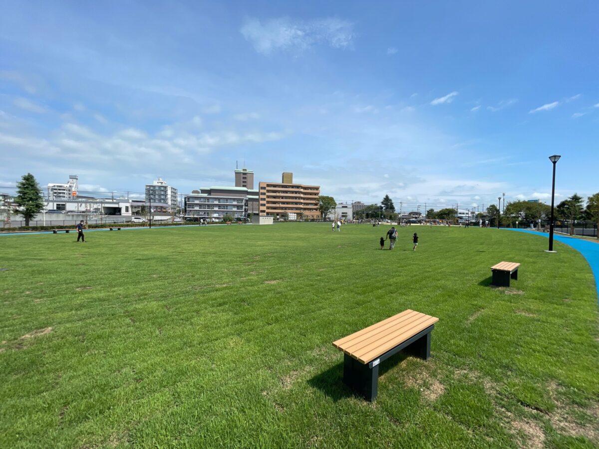 水上公園の芝生